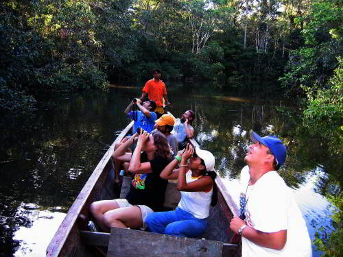 Visiting the Amazon in Ecuador: Birdwatching by visitors of the Amazon in Ecuador