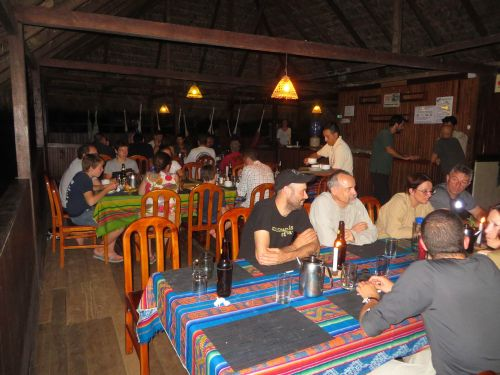Visiting the Amazon in Ecuador: Make great friends at the Cuyabeno Lodge when visiting the Amazon in Ecuador.